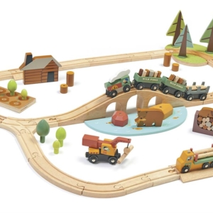Tender Leaf Toys : mon premier train